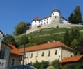 Čas hiti- iz življenja članov društva iz Sevnice